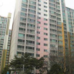 二村漢江デウアパート