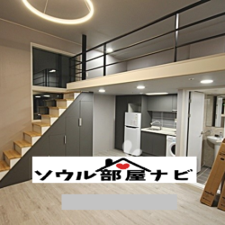 【新林・新大方駅】広々ロフト付き新築オフィステル