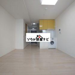 【合井(ハプチョン)駅 オフィステル008-B】