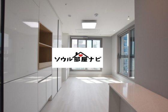 【新設洞(シンソルドン)駅 オフィステル407-D】