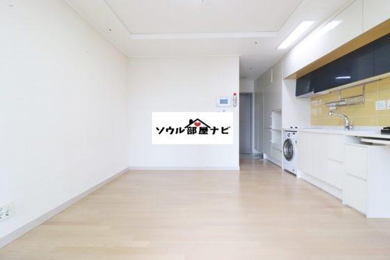 【ソウル駅 オフィステル1304-F】