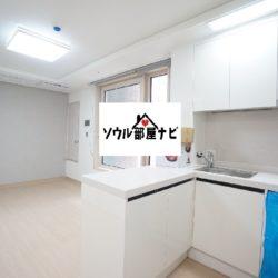 【新論峴(シンノニョン)駅  オフィステル808-E】