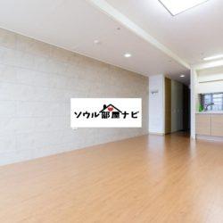 【忠武路(チュンムロ)駅 オフィステル1203-G】