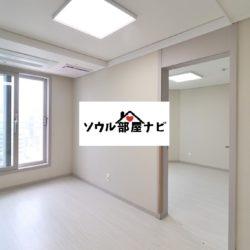 【東大門歴史文化公園駅 アパート1204-D】