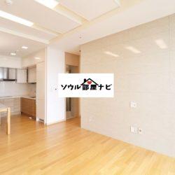【新龍山駅 オフィステル1300-N】