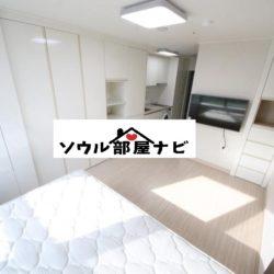 【狎鷗亭(アックジョン)駅 オフィステル701】