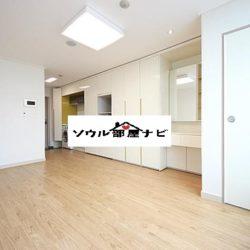 【堂山駅 オフィステル1003-A・B】