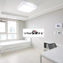【江南駅 オフィステル804-A・B】