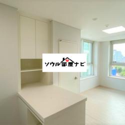 【新吉(シンギル)駅 オフィステル1017-C】