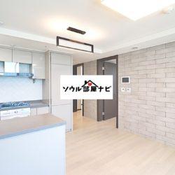 【南部ターミナル駅 オフィステル801-B】