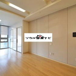 【新龍山駅 オフィステル1300-G,H】