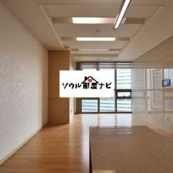 【新龍山駅 オフィステル1300-K】