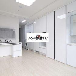 【南部ターミナル駅 オフィステル821-C】