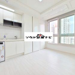 【加山デジタル団地駅 オフィステル1113-A】