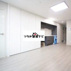 【禿山(ドクサン)駅 オフィステル1112-B】