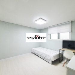 【北漢山輔国門駅 ワンルーム1508】