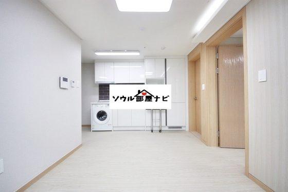 【仙遊島(ソニュド)駅 オフィステル1416-B】